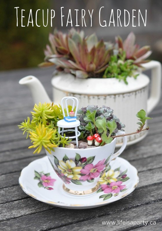 14 Cute Teacup Mini Gardens Ideas -