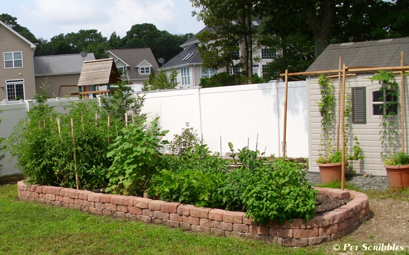 18 DIY Raised Garden Bed Ideas - Page 2 of 3 Raised Garden Beds With Pavers Backyard Ideas on school raised garden bed ideas, backyard vegetable garden ideas, stone raised garden bed ideas, backyard garden design ideas, backyard garden fencing ideas,