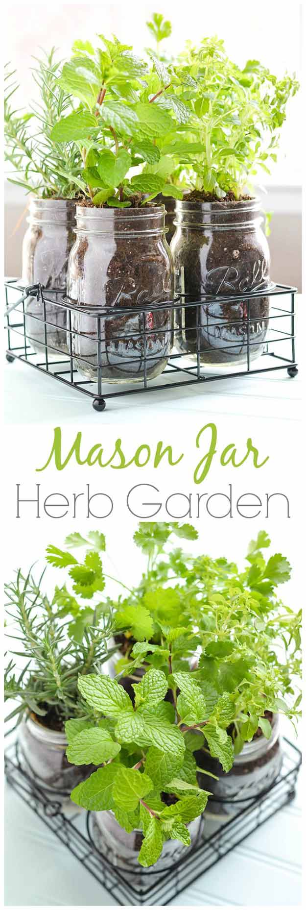 18 Indoor Herb Garden Ideas - Page 3 of 3
