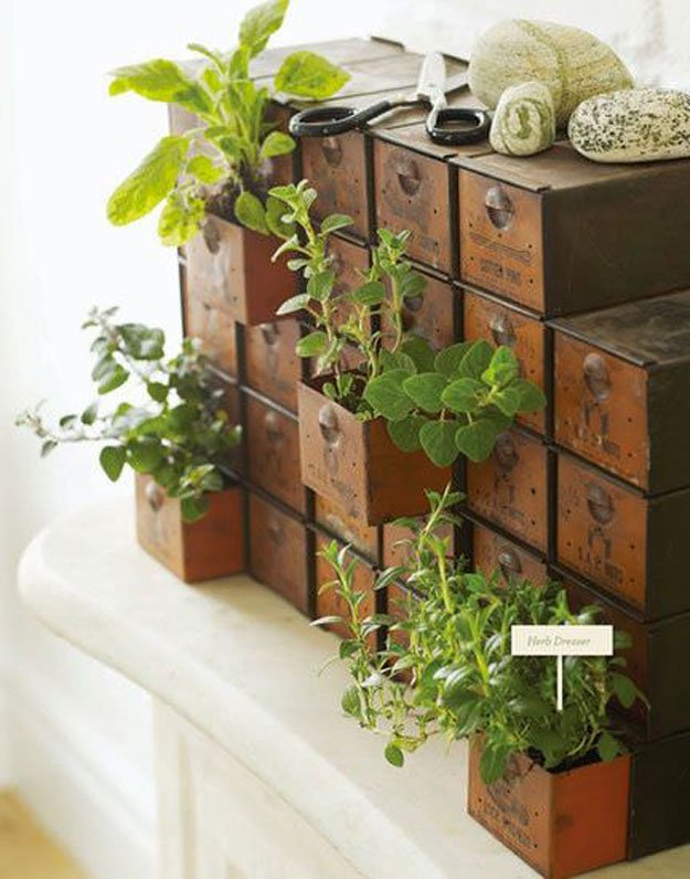 18 Indoor Herb Garden Ideas--Upcycle Drawer Herb Garden