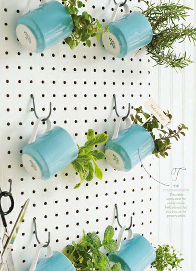 18 Indoor Herb Garden Ideas---Pegboard Herb Garden