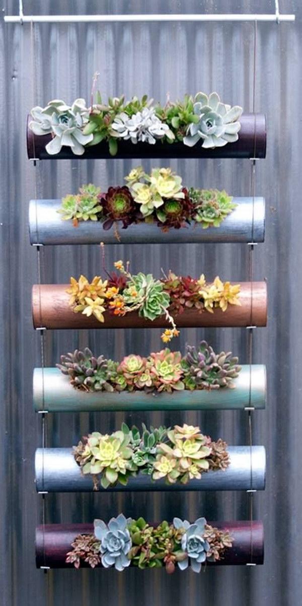 vertical hanging succulents - Indoor Succulent Garden