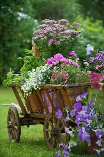 Upcycled Wheelbarrow for the Garden
