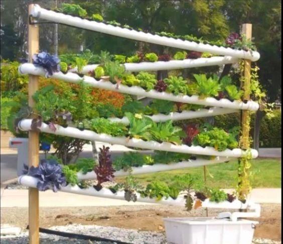 20 cool vertical garden ideas page 4 of 4 for Indoor gardening reddit