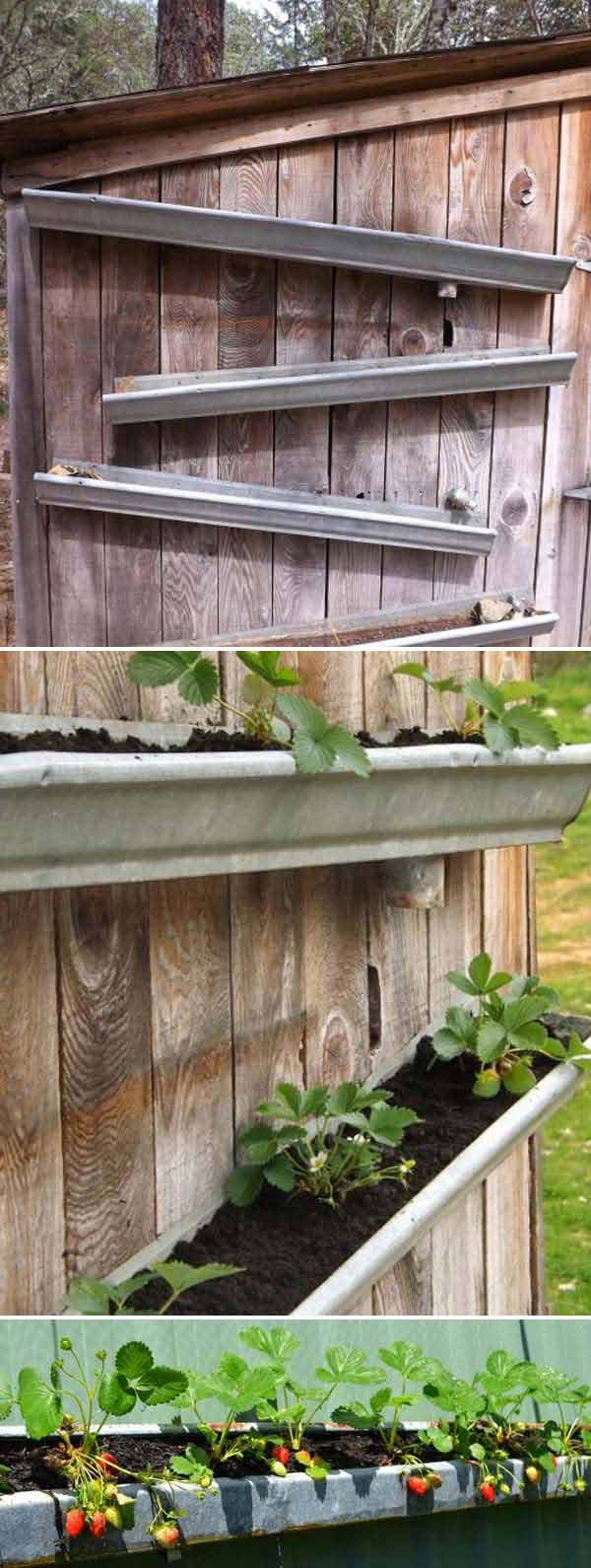 wooden planters for strawberries with Diy Ways Grow Vertical Strawberry Garden on School Fruit Garden as well 473511348291272567 besides Vertical Herb Garden as well Pallet Strawberry Planter besides Vertical Pyramid Garden Planter Diy.