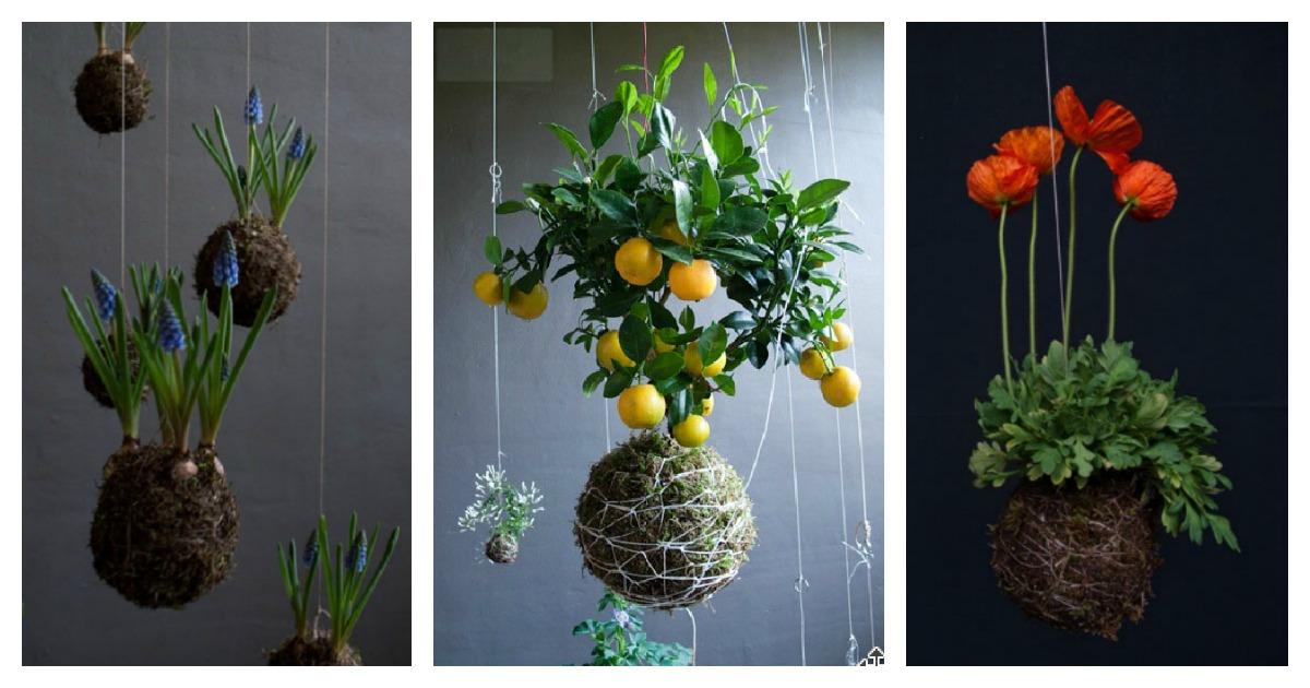 DIY Hanging String Garden