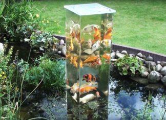 upside down fish tank
