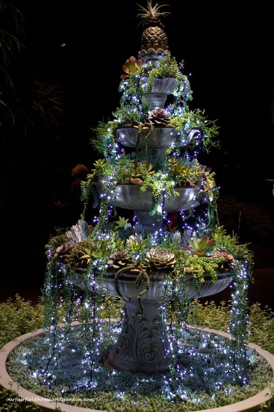 Succulent Fountain Lights