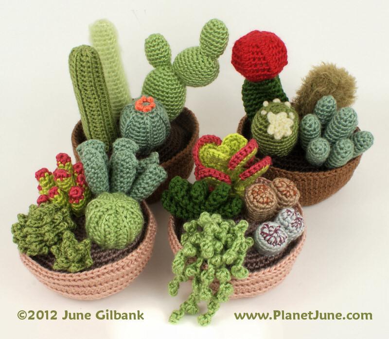 4 Amazing Crochet Cactus Patterns - Crochet Kingdom | 698x800