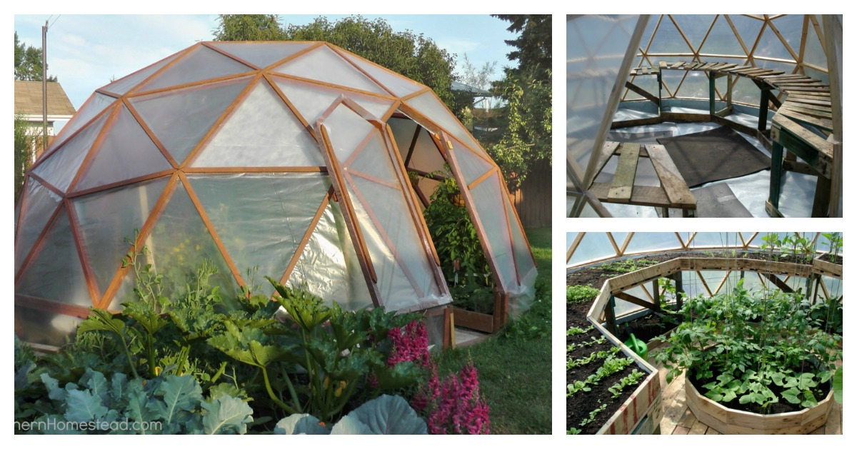 Diy Dome Greenhouse To Have Fresh Flower And Plants All