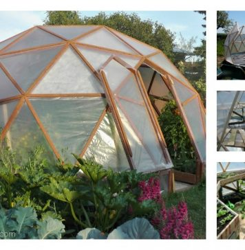 DIY Dome Greenhouse