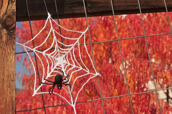Cobweb and Spider Free Crochet Pattern