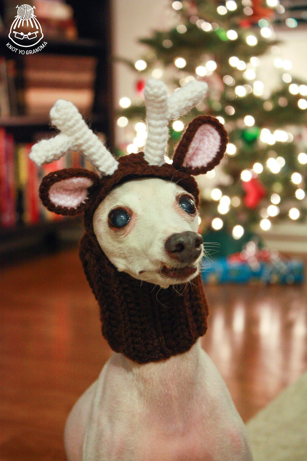 Free Crochet Patterns For Dogs : 20 Crochet Reindeer Patterns - Page 2 of 3