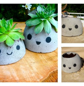 DIY Cute Concrete Planter
