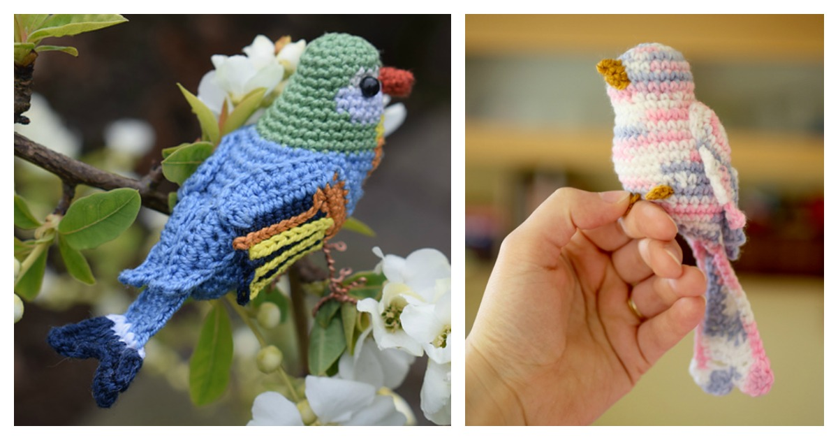 How to Crochet a Bird | Crochet birds, Crochet patterns amigurumi ... | 630x1200