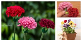 Crochet Carnation Flower Patterns for Mother's Day