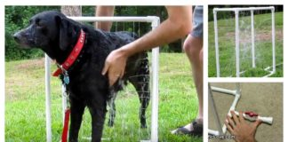 DIY Custom Dog Washer Out of PVC Piping (Video)