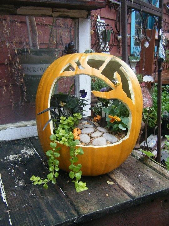 DIY Pumpkin Fairy Garden