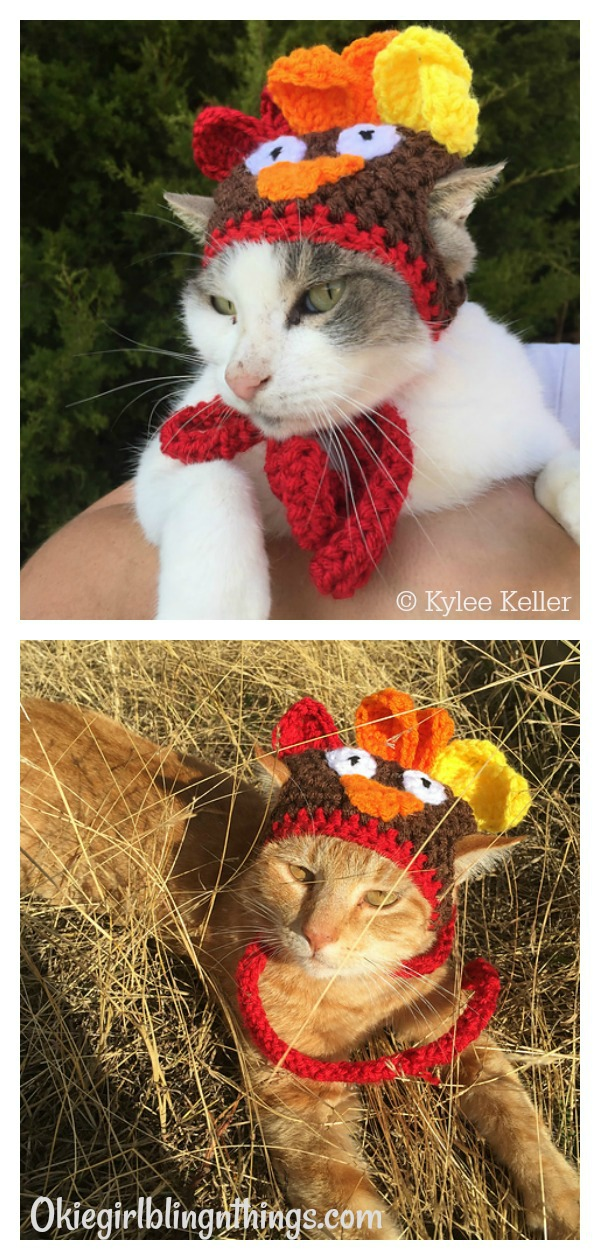 Cat or Small Dog Turkey Hat Free Crochet Pattern
