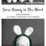 Some Bunny in the Hood Crochet Pattern - Once Upon a Cheerio   150x150