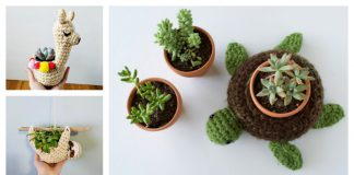 Cute Planter Crochet Patterns
