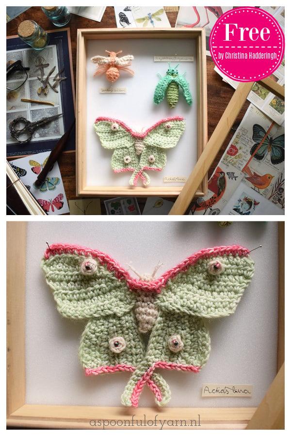 The Entomologist Free Crochet Pattern