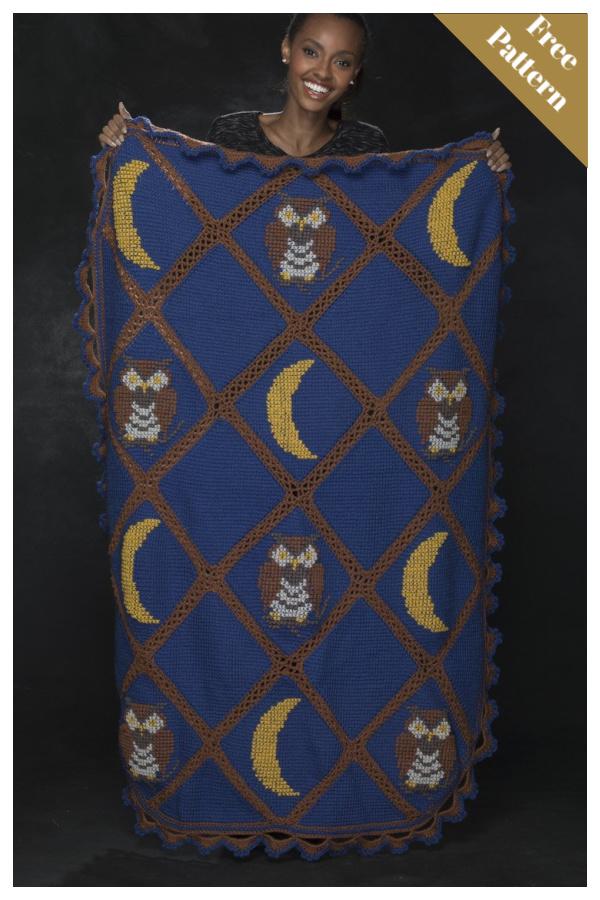 Tunisian Owl Afghan Free Crochet Pattern